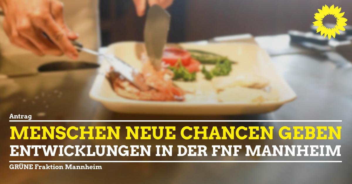 Entwicklung der FnF Mannheim