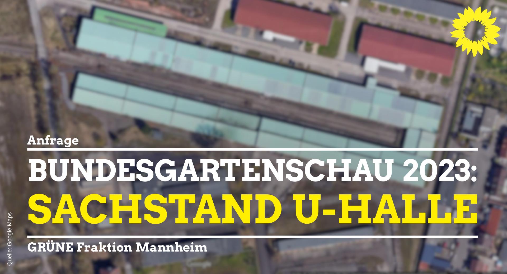 Sachstand U-Halle