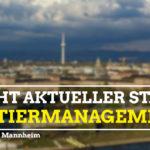 Bericht Stand Quartiermanagement (1)