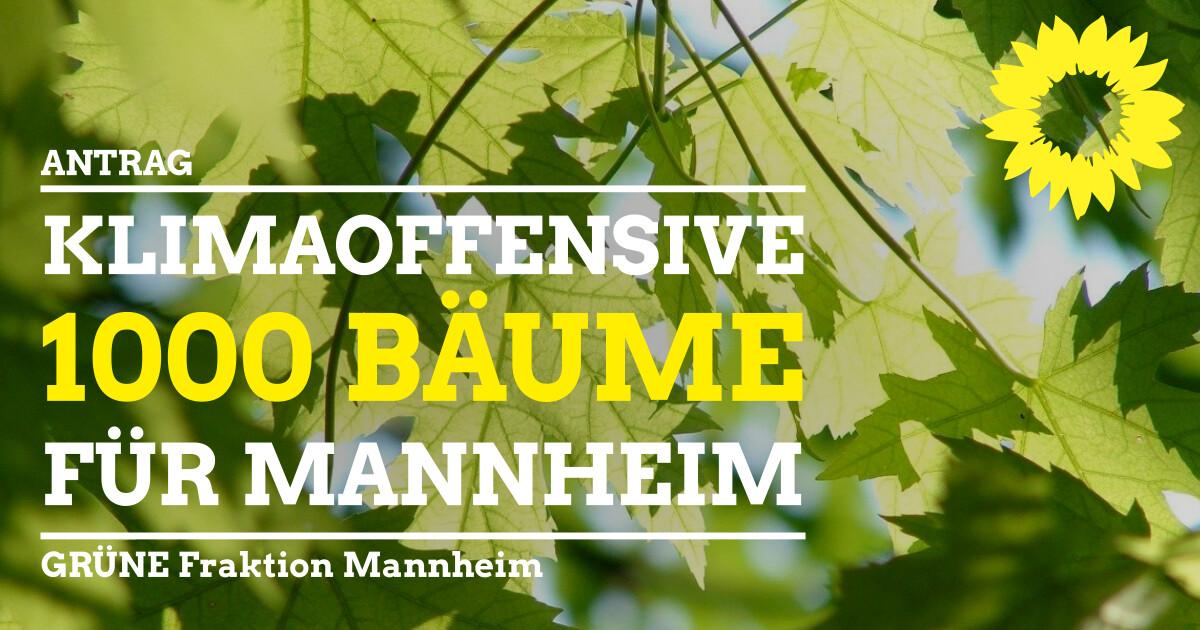 Antrag Klimaoffensive 1000 Bäume für Mannheim