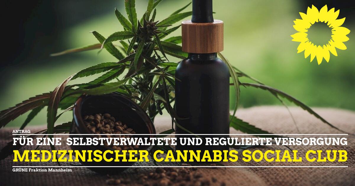 Antrag Einrichtung Cannabis Social Club